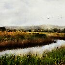 Wetlands Landscape by Margi