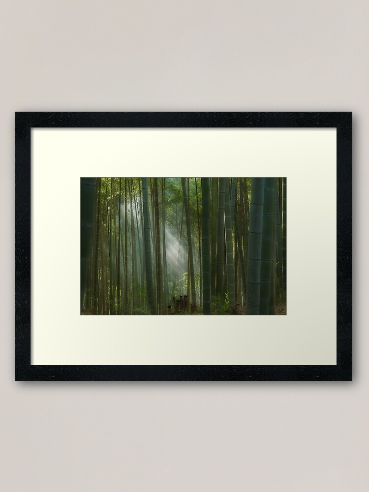 Alternate view of The mystic bamboo forest of Kyoto, Japan Framed Art Print