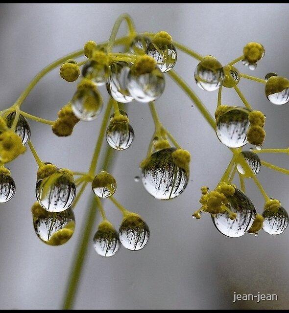 Rainy day... by jean-jean