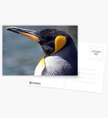 Emperor Penguin Postcards