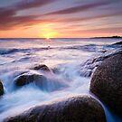 Redbill Sunrise by Patrick Reid