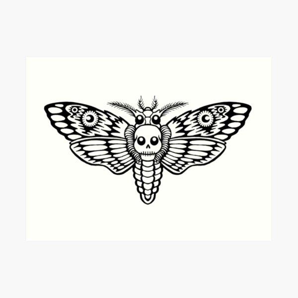 Skull Moth Flight Art Print