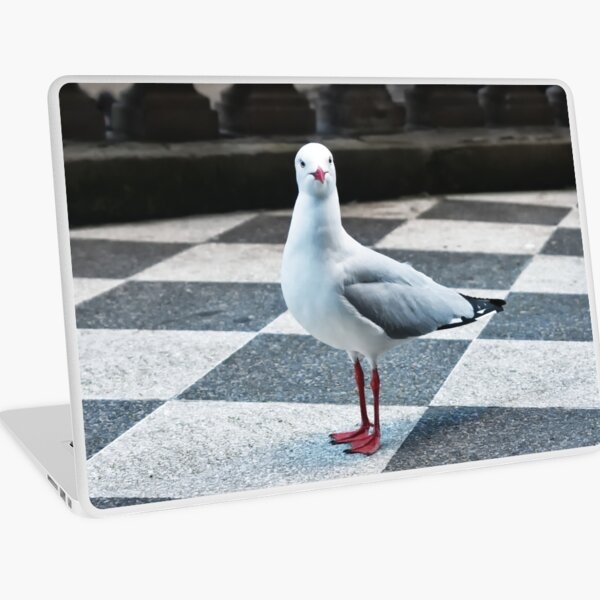Seagull in the City Laptop Skin