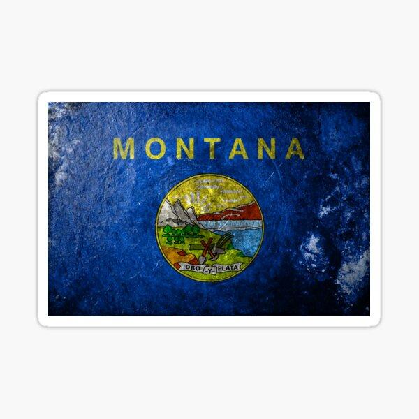 Montana Grunge Sticker