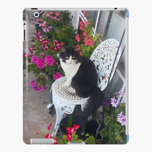 Tuxedo Cat Cute and Beautiful Flowers iPad Snap Case