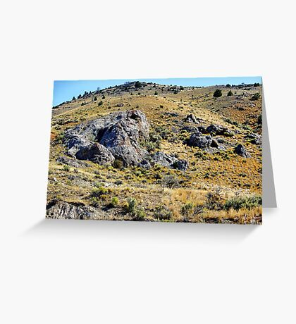 There's Gold in Them Thar' Hills Greeting Card