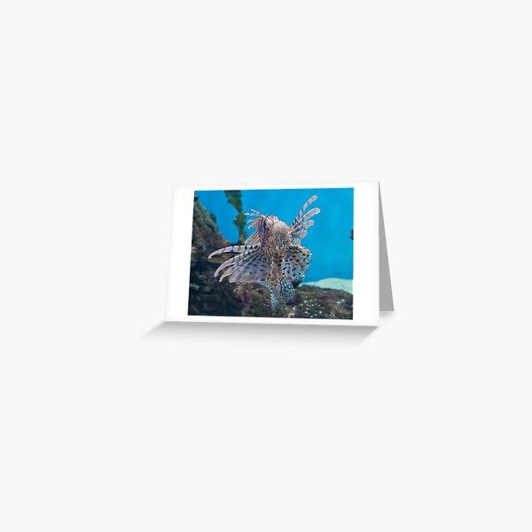 Fish in a Tank Greeting Card