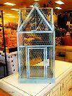 The Birdcage by RC deWinter