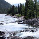 Elbow River View by Leslie van de Ligt
