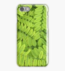 Bright green leaves and small acacia with dew drops iPhone Case/Skin