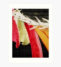 Hung Out to Dry Art Print