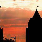 Milwaukee Sunset © by Dawn Becker