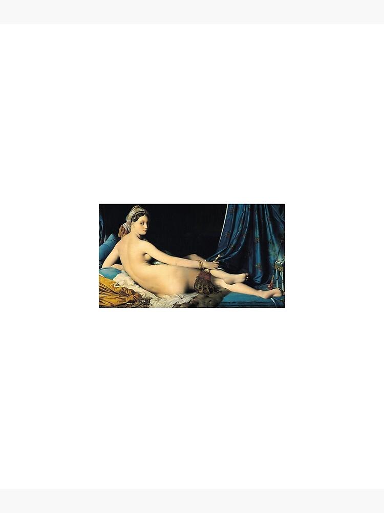 Ingres - La Grande Odalisque 1814 by Robin-