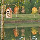 Fall in Northern Florida by Caren