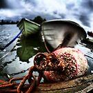 Rusty Buoy and a few boats by Juhana Tuomi