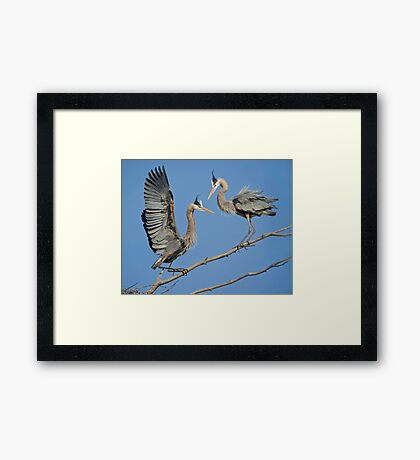 Breeding's Greeting Framed Print