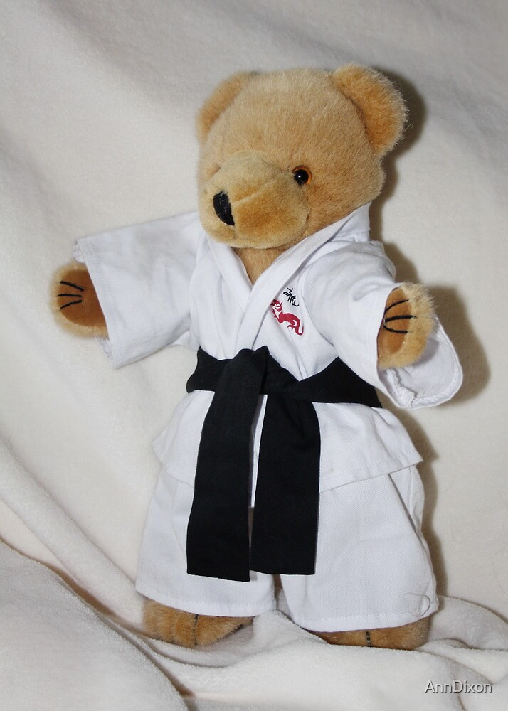 The Karate Kid (Ted) by AnnDixon