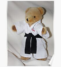The Karate Kid (Ted) Poster