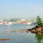 Fog, Corea, Maine by fauselr