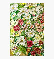Flowers in Watercolours Photographic Print