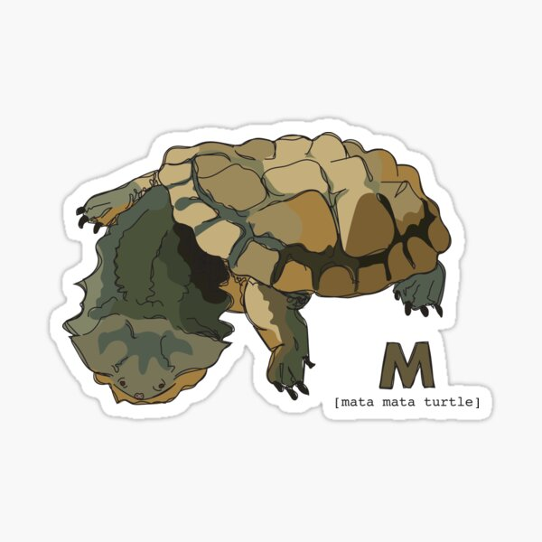Funky Animal Alphabet: M is for Mata Mata Turtle Sticker