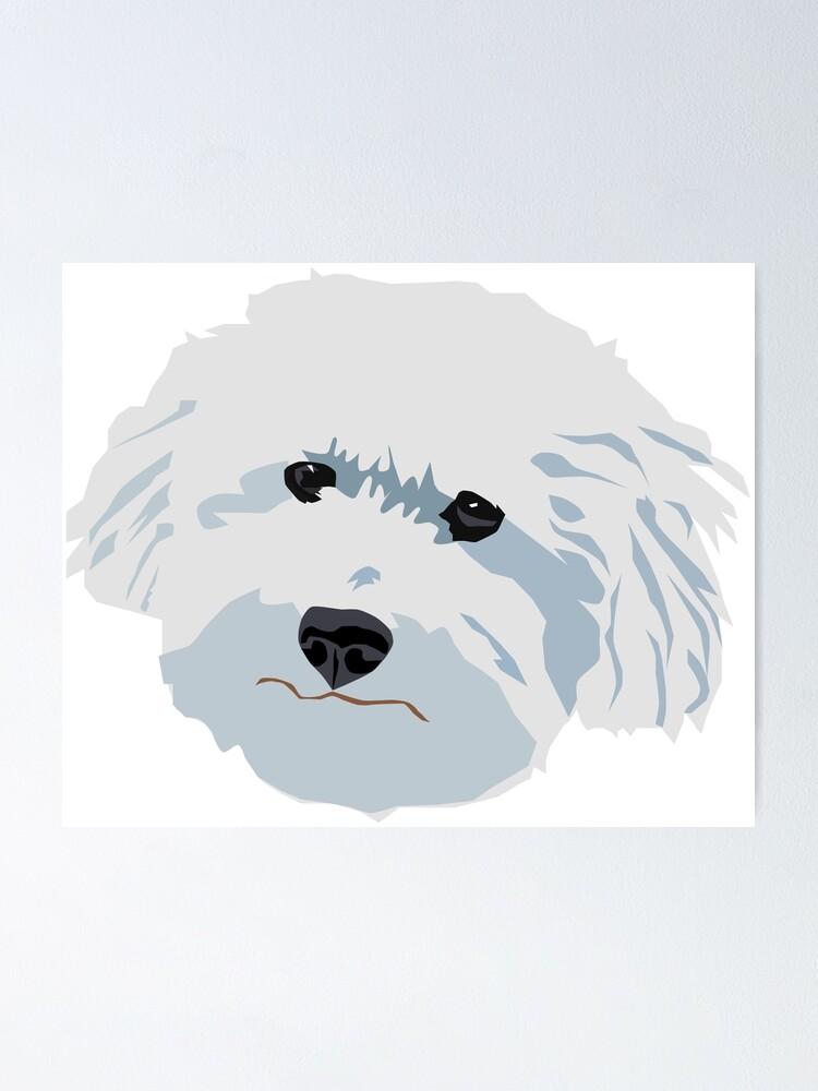 "Teddy Bichon Poodle White Dog Face Good Boy Illustration"" Poster by  MariaWorkman | Redbubble"
