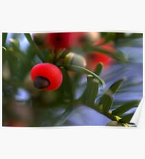 Berry Blur Poster