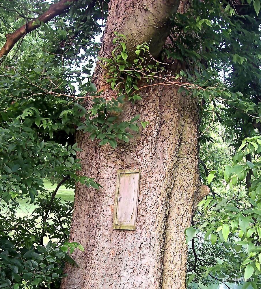 The Door by rosaliemcm
