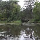 The Monet bridge by leesm19