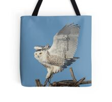 Quot Tree Dancer Quot Wall Tapestries By Heather King Redbubble
