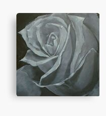 stone rose Canvas Print