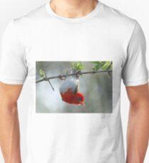 Red headed weaver bird Unisex T-Shirt