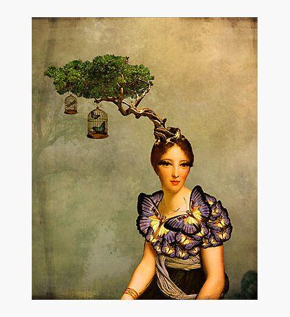 La Chasse aux Papillons Photographic Print