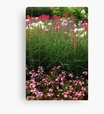 Red Poker Garden Flower Bed Canvas Print