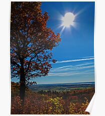 Rural Fall Landscape ~ Silhouette of a Single Tree bathed in Sun Rays on Hill Poster