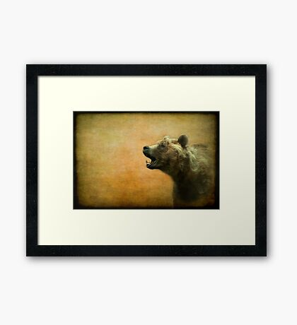 The call of the brown bear - textured Framed Print