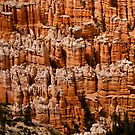 Bryce Canyo Fortress Walls by Gregory J Summers