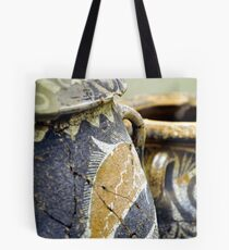 Archaeological find.  Tote Bag