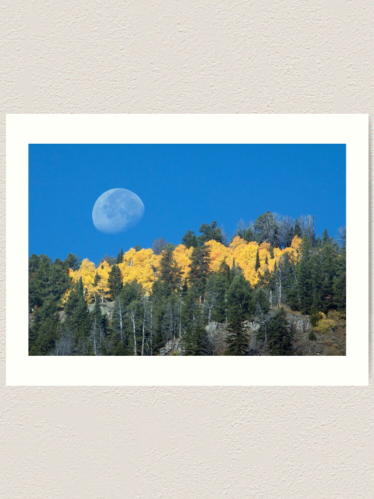 Alternate view of Moonset Over Fall Colors in Jackson Hole Art Print