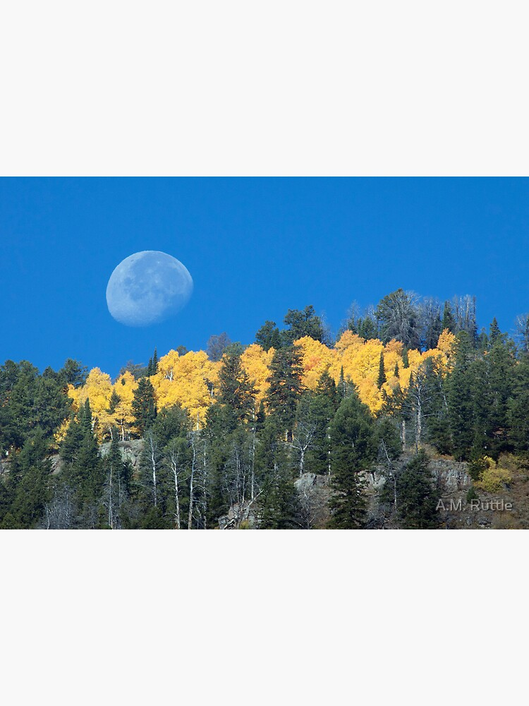 Moonset Over Fall Colors in Jackson Hole by annruttle