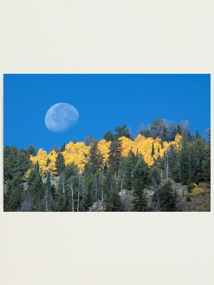 Alternate view of Moonset Over Fall Colors in Jackson Hole Photographic Print