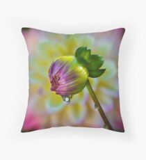 Dewdrop..... Throw Pillow