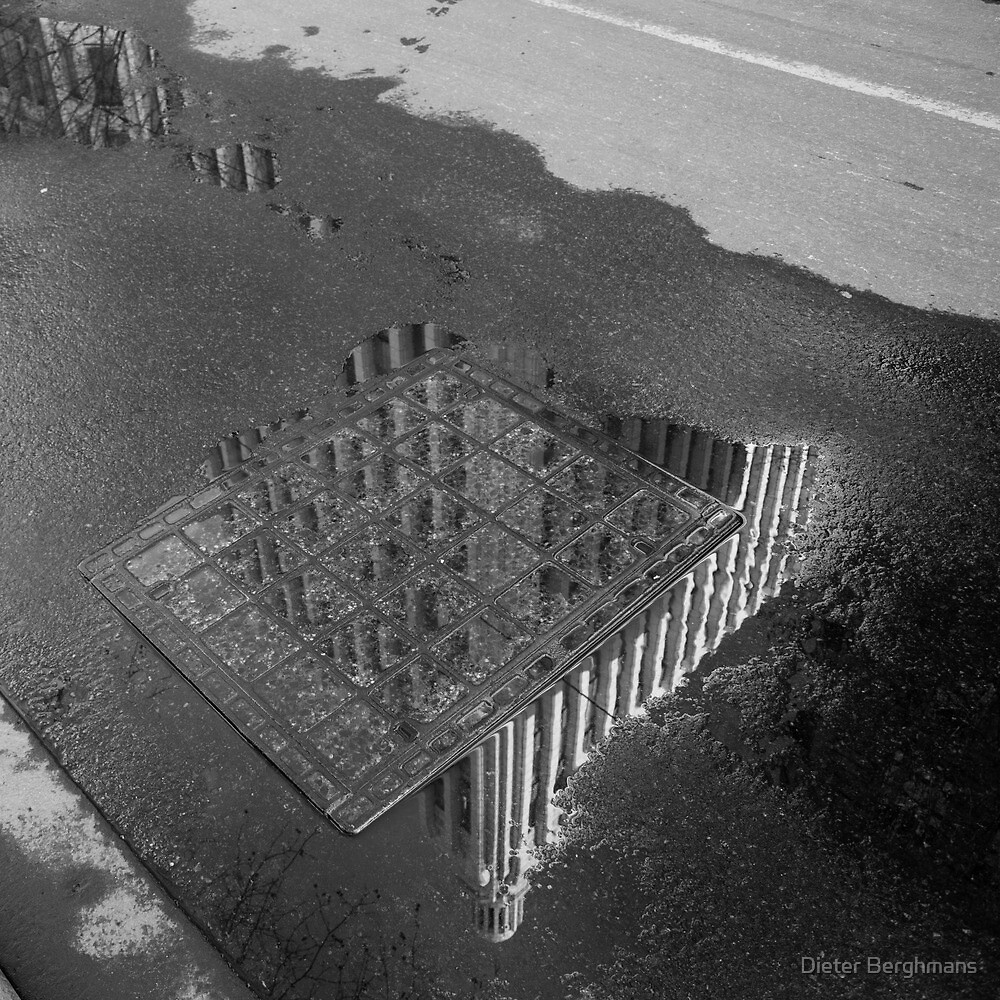 Manchester Unity Building, reflected by Dieter Berghmans