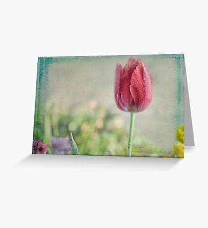 Une Tulipe Greeting Card