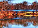 Autumn Reflections by Marcia Rubin