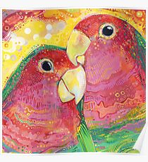 Peach-faced lovebird painting - 2012 Poster