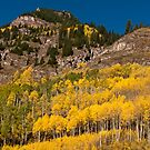 Gold and Granite by Gregory J Summers