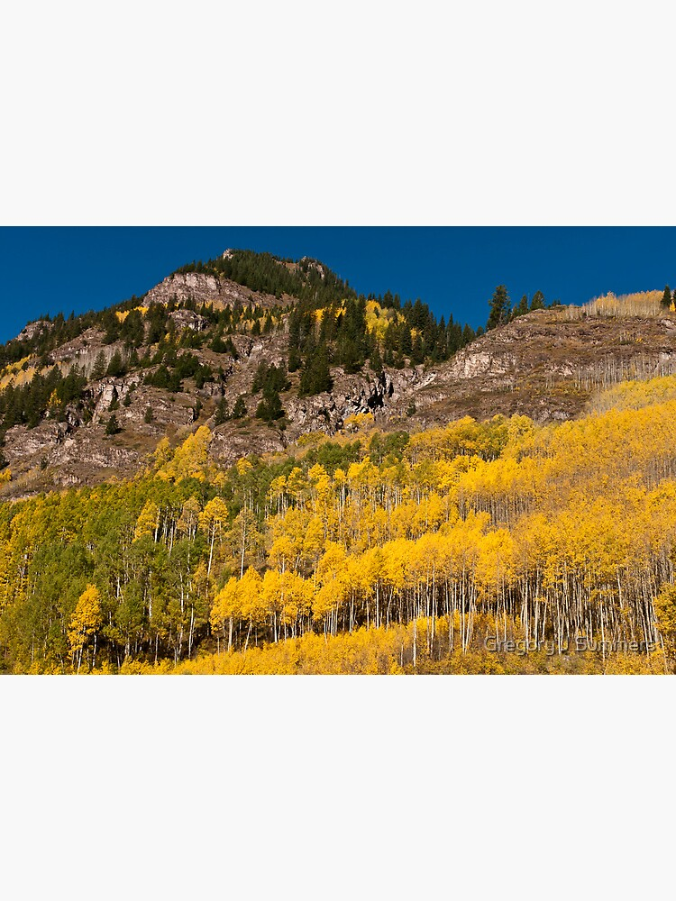 Gold and Granite by nikongreg