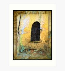 Arched Gated Window - Italy Art Print