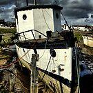 Boat  by savosave
